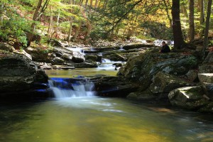 1024px-Meditation-beautiful-autumn-forest-waterfall_-_West_Virginia_-_ForestWander[1]